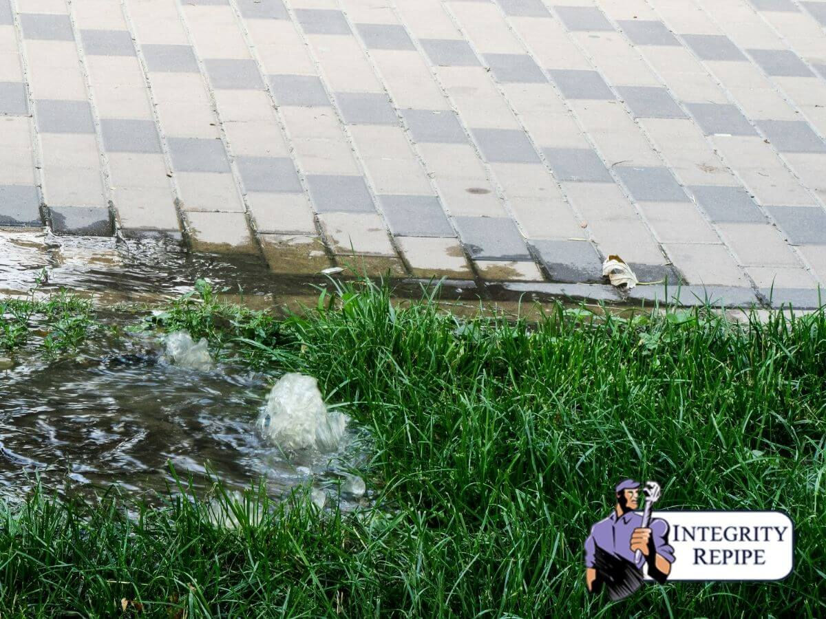 5 Indications that Your Main Sewer Line is Compromised